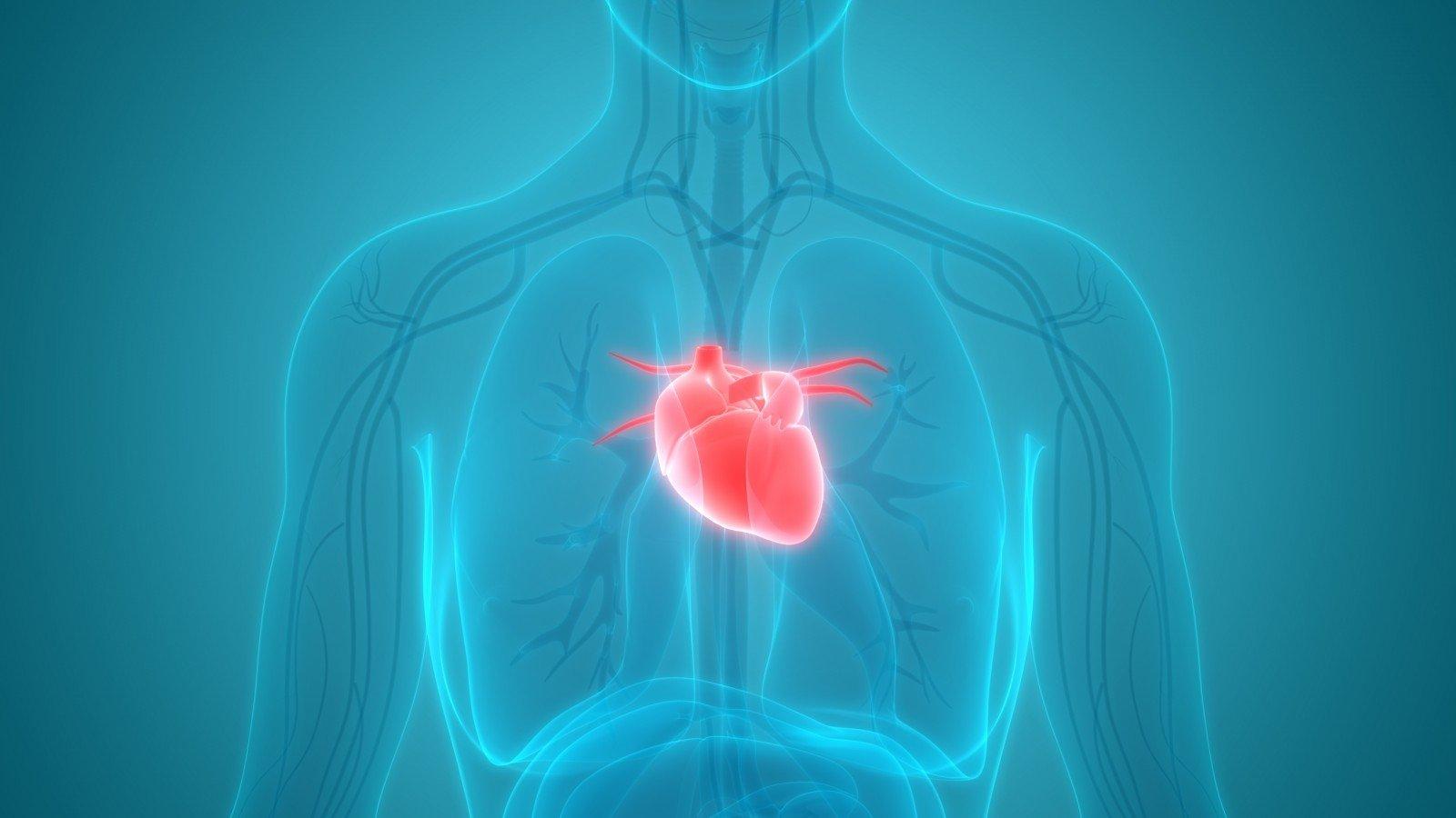 didelio intensyvumo širdies širdies sveikata