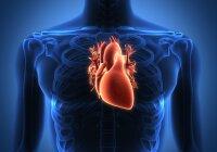 alimentų sveikata širdis