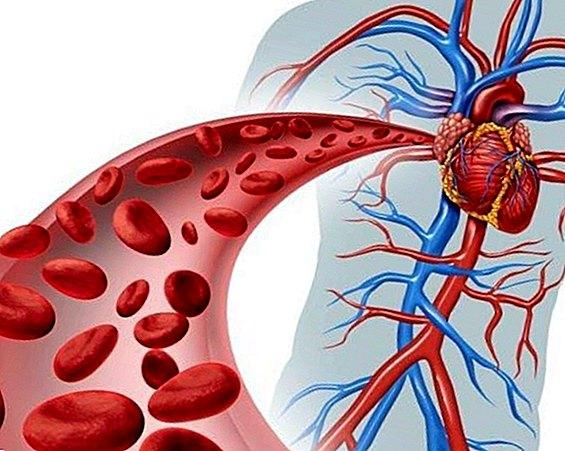 su hipertenzija kreatinino