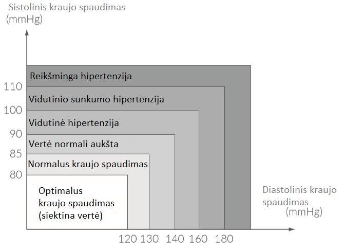 hipertenzija aukštose grindyse)